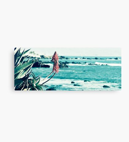 Mexican Sea View Canvas Print