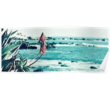 Mexican Sea View Poster