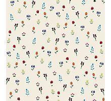 Carmen's Tiny Garden Photographic Print