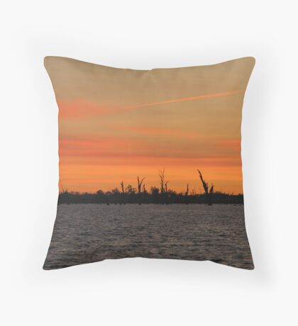 Suset Spectacular Throw Pillow