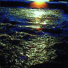 Tevere river by gluca