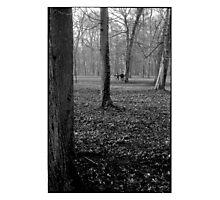 alone in the park • dijon, burgundy •2008 Photographic Print