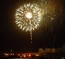 Fireworks on riverfront by Larry  Grayam