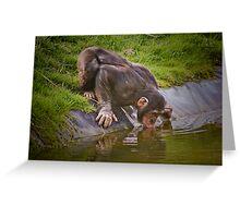 Thirsty chimp ! ........... Greeting Card