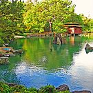 The Japanese Garden by phoggy