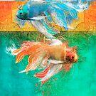 Splendiferous by Aimee Stewart