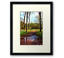 Muddy Waters near Stone Bridge Framed Print