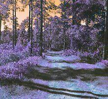 Landscape in Purple & Orange 3285 by korokstudios