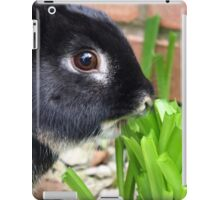 Black Rabbit iPad Case/Skin