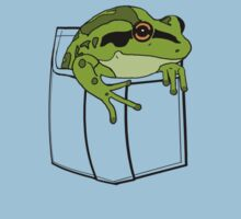 What frog? (Transparent pocket) by Lund