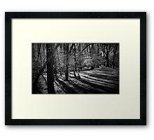 Bull Run Path in Black and White Framed Print