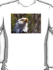 Looking Upward T-Shirt