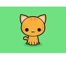 Kawaii ginger cat Photographic Print