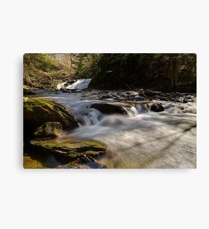 Falls Along Mill Brook - Rapids Below the Falls Canvas Print