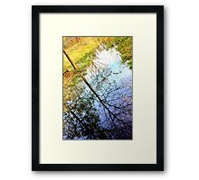 The Secret Life of Water Muddy Framed Print