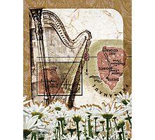 [ harpe ] Photographic Print