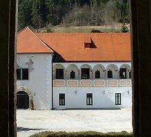Bishop's Window - Gaming, Austria by triciamary