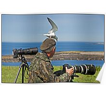 Perils of a Wildlife Photographer Poster