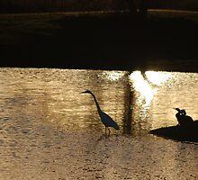 Sunset at the pond by León Felipe Guevara Chávez