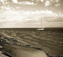 Shark Bay Boat by Rochelle Boardman