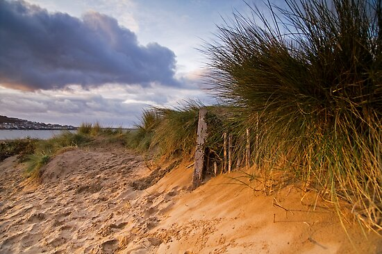 Instow Sand Dune by Robert Kendall