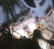 looking glass world by butchart