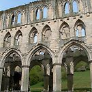 Rievaulx Abbey by hilarydougill