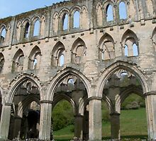 Rievaulx Abbey by hilarydougill