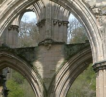 Close up of one of the Arches- Rievaulx Abbey by hilarydougill