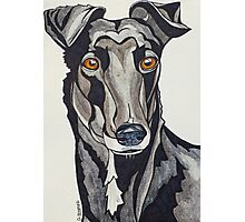 #7: Neve the Guru Greyhound: Messages from the Dogs Oracle Deck Photographic Print
