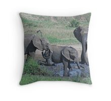 Elephant Mud Bath, Tarangire National Park, Tanzania, Africa (Y) Throw Pillow
