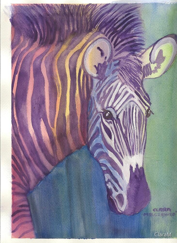 Multi Colored Zebra by ClaraM