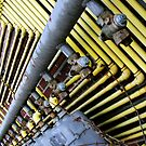 Pipeline!  by Maureen  Geraghty
