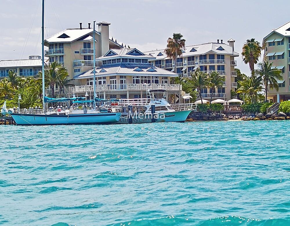 Graceful Living In Key West by Memaa