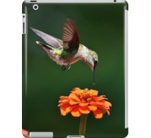 Hummingbird Bullseye iPad Case/Skin