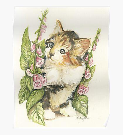 Flower Kitten Poster