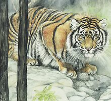 Crouching Tiger by morgansartworld