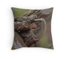 chimpmunk Throw Pillow