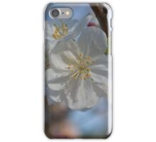 White CrabApple Blossoms iPhone Case/Skin