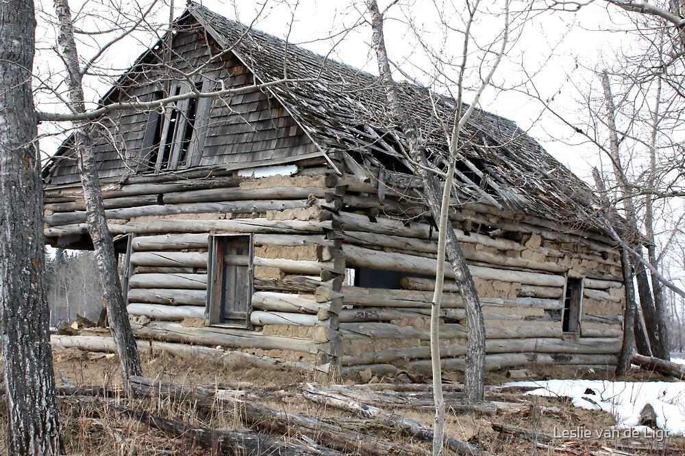 This Old House by Leslie van de Ligt