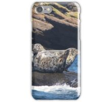 Grey Seals  iPhone Case/Skin