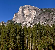 Half Dome by Alex Preiss