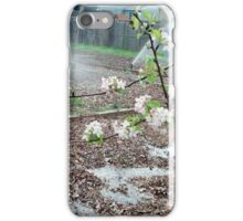 Blossoms in the City iPhone Case/Skin