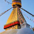 Stupa by David Reid