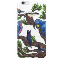 Bird Life iPhone Case/Skin