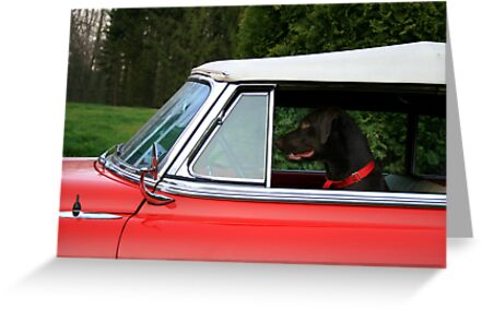 DOG GONE DRIVER by Lori Deiter