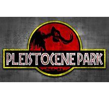 Pleistocene Park Photographic Print