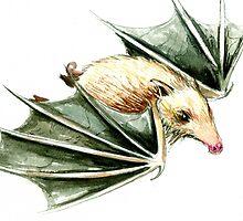 The Swine Flew by Nicholas  Beckett