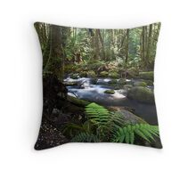 Meeting of the Rivers, Near Marysville Throw Pillow
