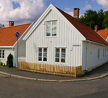 Traditional Norwegian homes by emmettm